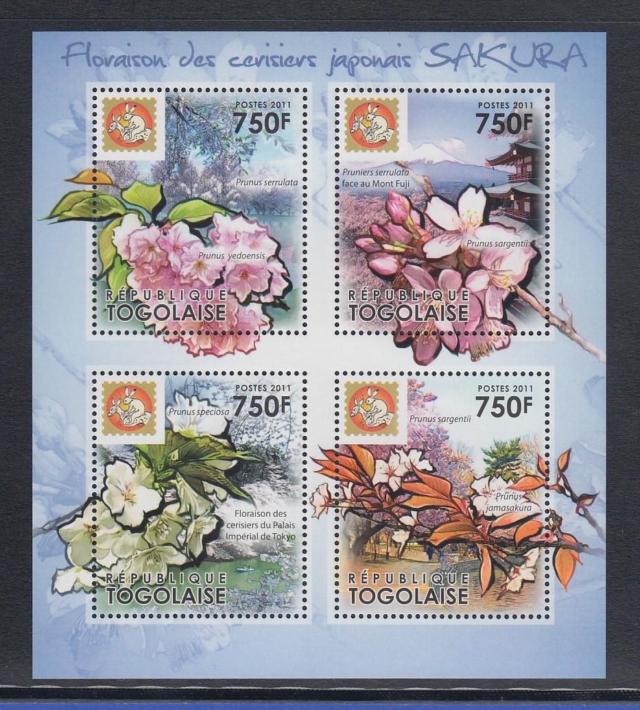 unused 13713 Flowers Postcard